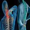 Phương pháp tự phục hồi cột sống và nâng cao trí lực bằng con lăn sức khỏe Việt Nam